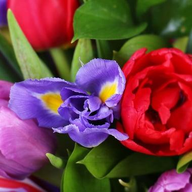 Яркая весна Киев
