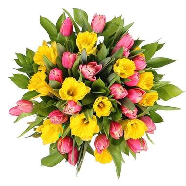 Тюльпаны и нарциссы Киев