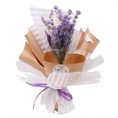 of lavender Kiev