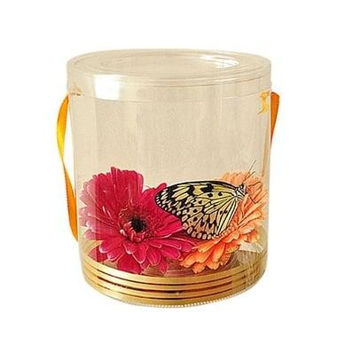 Живая бабочка в прозрачной кробочке с цветами Киев