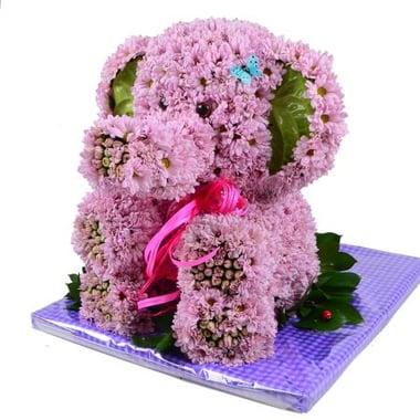 Рожевий  слон Київ