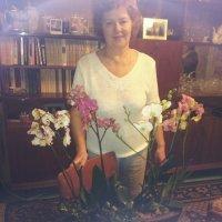 Sendflowers.ua - доставка цветов по Херсону