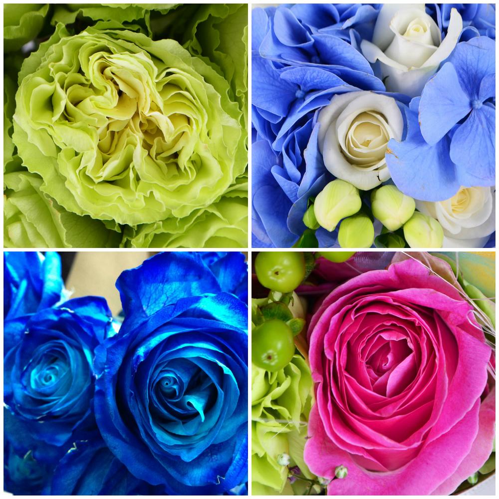 Самые красивые цветы розы в букете