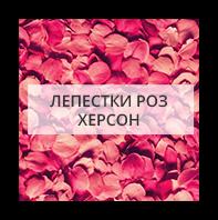 Лепестки роз Могильов