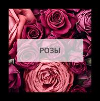 Розы в Екатеринбурге