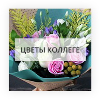 Коллеге Санкт-Петербург