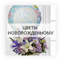Новорожденным Хмельницкий
