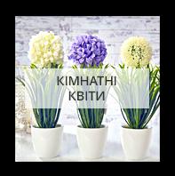 Комнатные цветы по Харькову