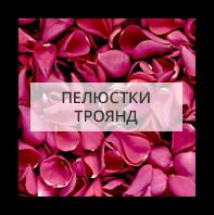 Лепестки роз Херсон